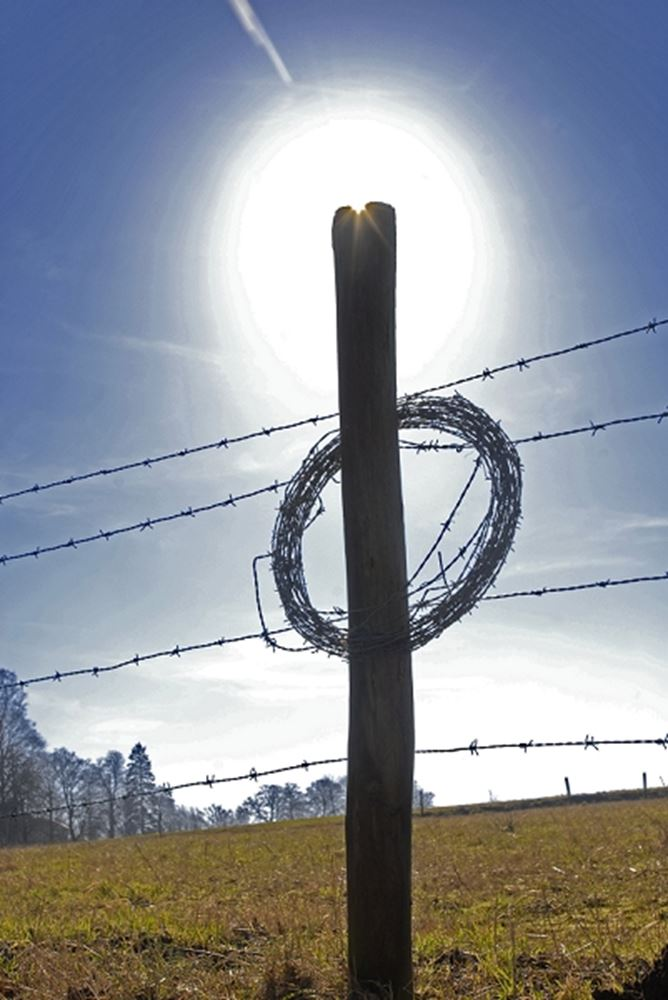 Barbwire against blue sky, Sweden