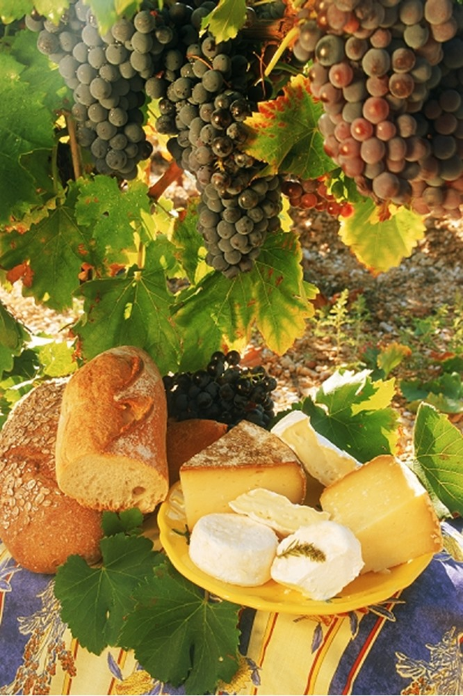 Cabernet-grenache grapes w,cheese & bread in Provence vineyard