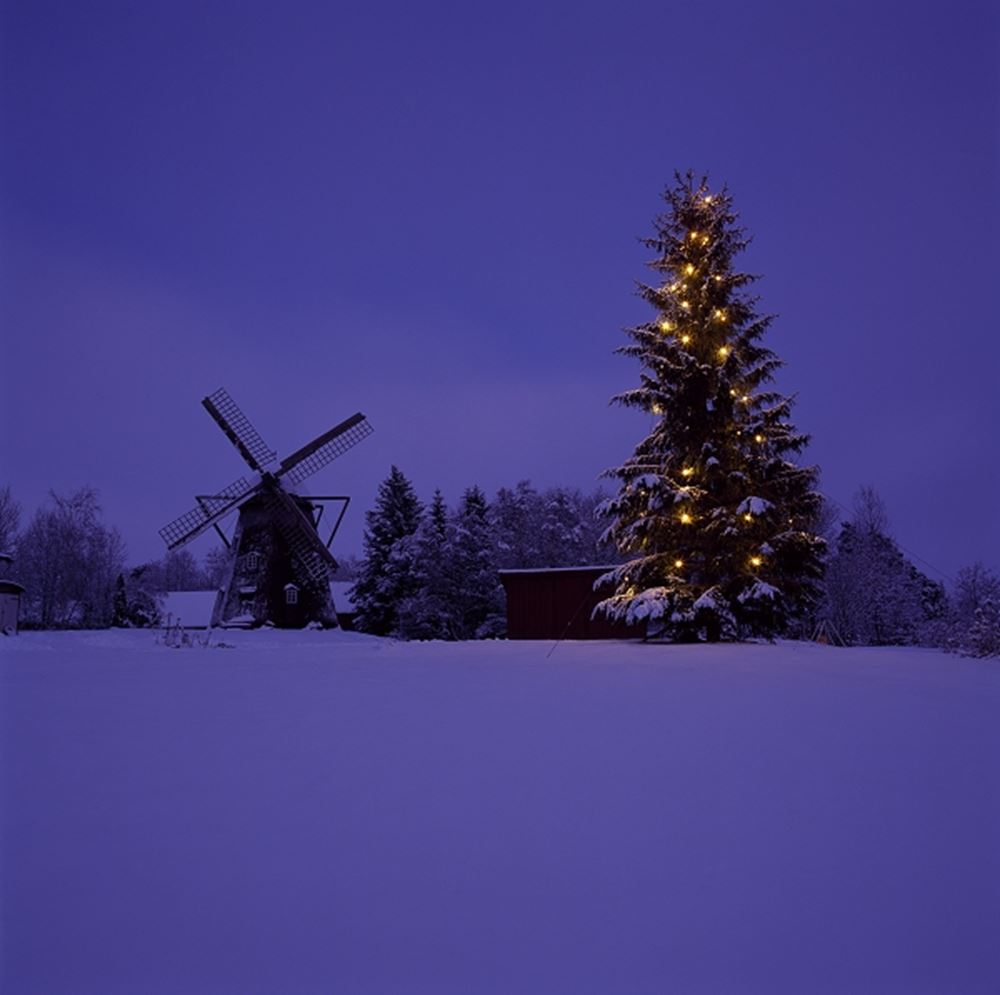 Christmas tree on a polar landscape with a windmill in the background