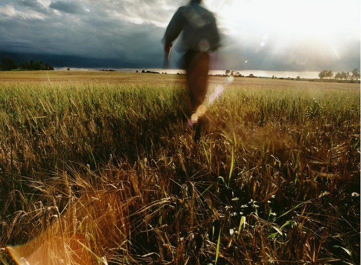 A person walking in a field under a clouded sky