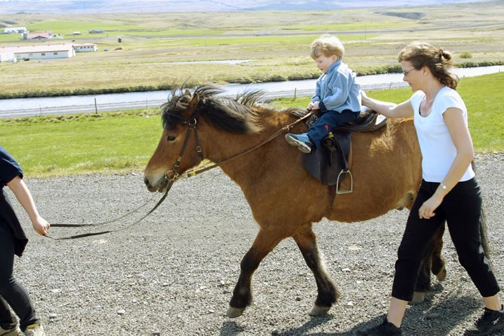 A child riding an Icelandic horse. Iceland